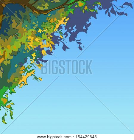sky background with lush multi-colored leaves of the tree