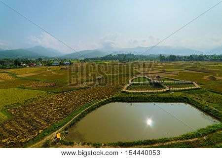 Landscape Of Mountain And Farm
