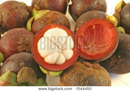 Tropical Mangosteen