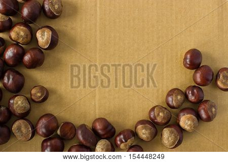 Horse chestnut on a background of cardboard. Flat lay.