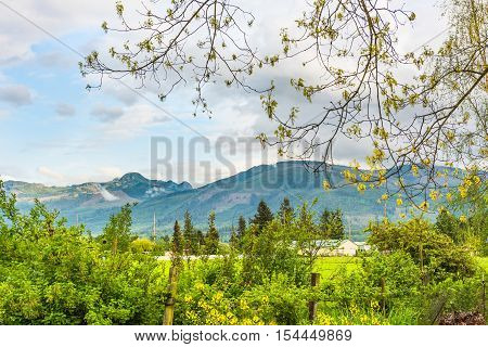 Skagit valley rural scenery with farm and mountains framed by tree