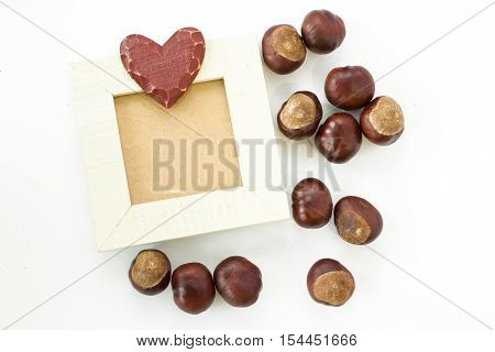 Photo frame made of wood. Horse chestnut. White background. Space for text.