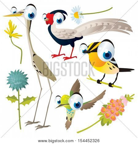 vector cute colorful cartoon isolated birds and flowers illustrations collection: pheasant, egret, warbler, hummingbird