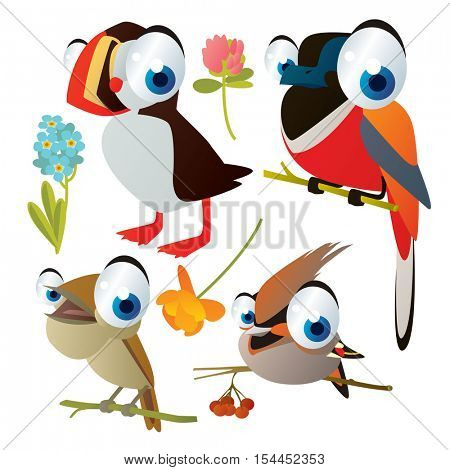 vector cute colorful cartoon isolated birds and flowers illustrations collection: puffin, nightingale, waxwing, bird of paradise