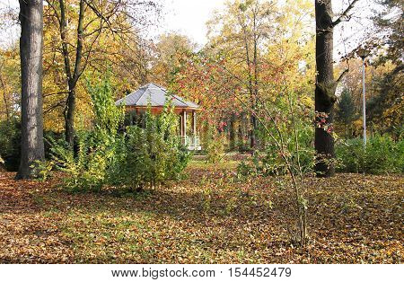 park in autumn with colorful trees and plants and a summer house