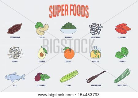 Set of superfoods products, berries, green in vector. Icons, design elements of cocoa beans, goji berry, acai seeds, spirulina, quinoa for super food wellness concept