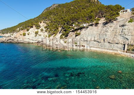 Azure Bay. Azure bay with crystal clear water through which can be seen the rocky bottom On top of the mountain covered with pines is an observation deck from which is paved descent to the beach.