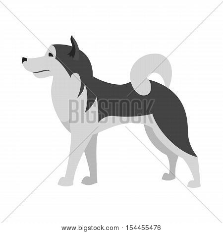Alaskan malamute dog breed in flat style, alaskan animal purebred and husky character vector illustration