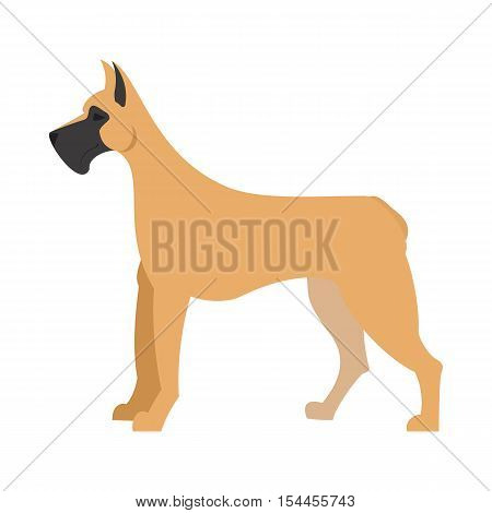 Great dane dog and large doggy pet, domestic mammal vector illustration