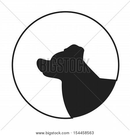 Silhouette of a dog head border collie. Companion pet in monochrome style. Vector illustration