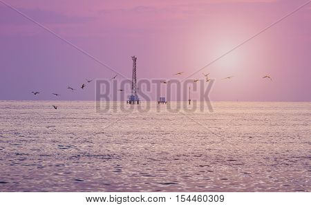 Pink tone of sunset on sky and sea with crane and bouy floating on sea surface which sea birds fly over water surface.