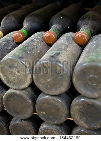 Old dusty of wine in bottles  mellow