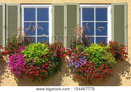 Colourful flowers in boxes at the window.