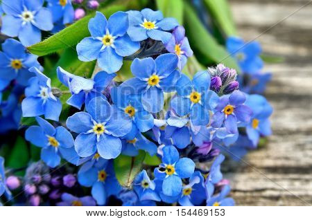 Bouquet Of Blue Forget-me On A Wooden Background