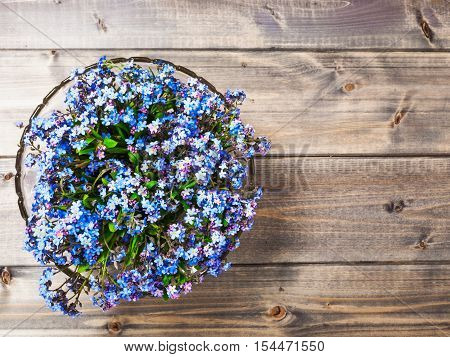 Flower on wooden background. Bowl of small blue forget me not flowers . Springtime. Copy space. Top view flat lay