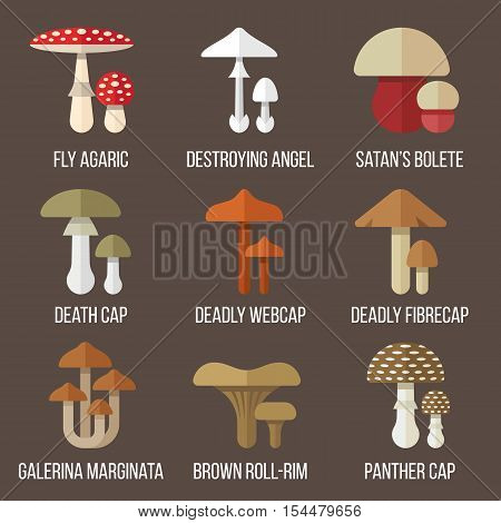 Vector set of poisonous mushrooms. Flat style.