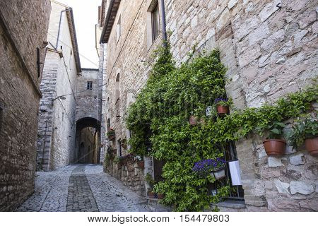 Road flourished in the city of Spello in Umbria in Italy