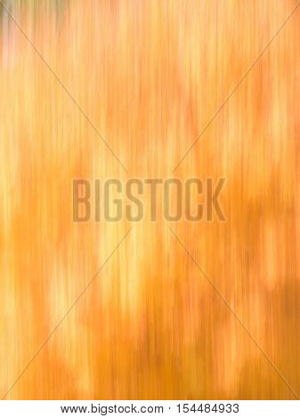 Blur of natural leaf colors in the Fall specifically oranges and yellows. Suitable for background or abstract.