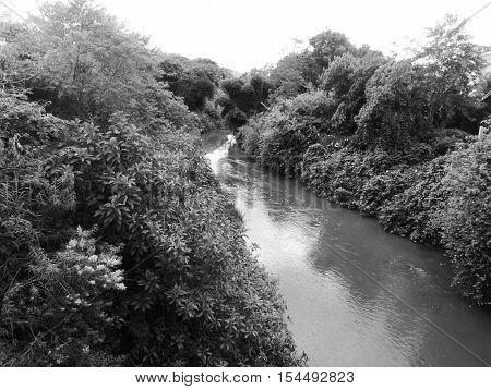 Uma longa jornada pelo desconhecido rio cobra poster