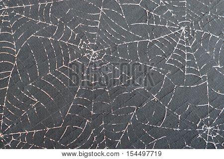 Silver Spiderweb Pattern over Dark Wood Texture