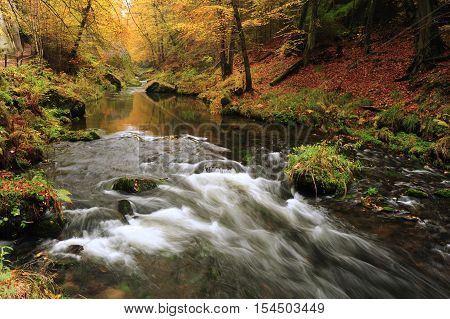 Autumn colored trees leaves rocks around the beautiful river