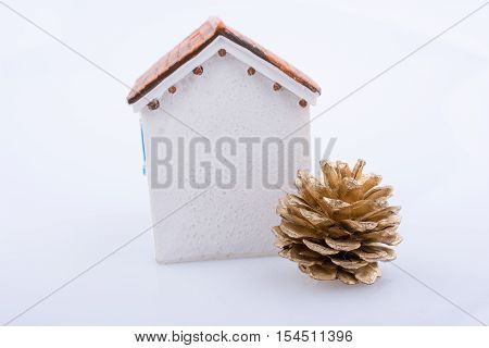 Little Model House And  A Pine Cone