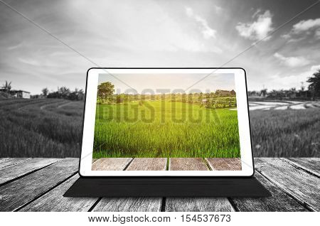 Digital tablet on wooden texture, at agricultural green field in sunrise