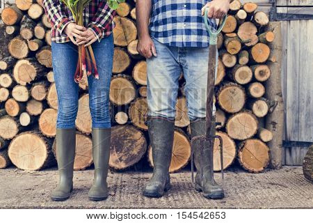 Firewood Lumber Timber Lumber Log Concept