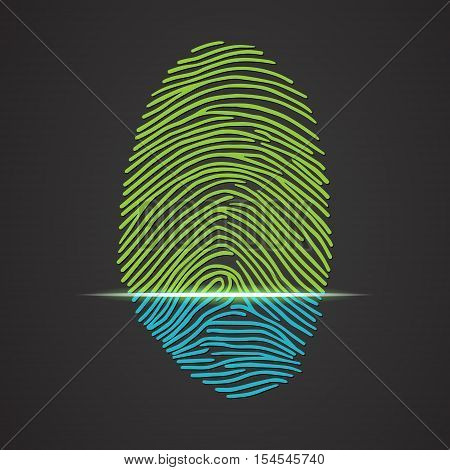 Fingerprint identification with whorls. Vector illustration isolated on black background, eps 10.