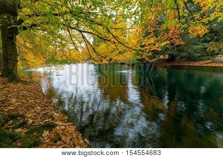 Fall foliage colors at Laurelhurst Park by the lake in Portland Oregon City in Autumn Season