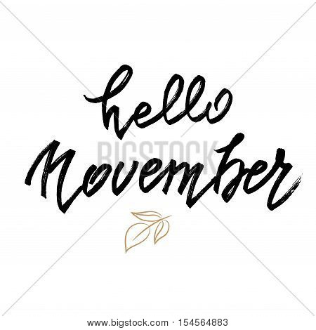 Hello November lettering. Autumn abstract vector banner. Calligraphy greeting card design. White background isolated. Vector illustration stock vector.