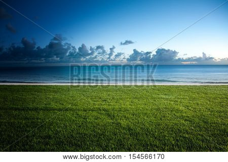 Lush green lawn bordering a tropical beach with a tranquil ocean and cumulus cloud formations on the horizon in a nature background