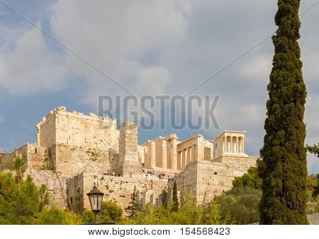 The Acropolis of Athens in Greece behind a Cypress Tree