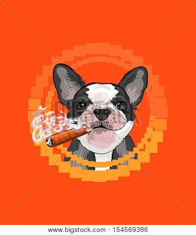 Smokes incredibly cool puppy bulldog colorful retro vector illustration for fan design and print