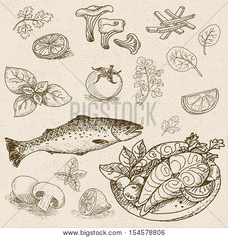 Set of chalk sketch hand drawn, in sketch style, food and spices, old paper textured background. Fish, trout, salmon, tomatoes, parsley, lemon, basil, mushrooms. Hand drawn vector illustration.