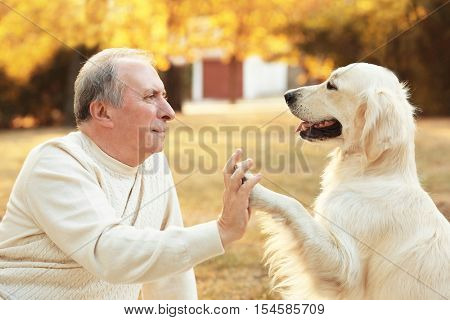 Big dog and male owner making high five, closeup