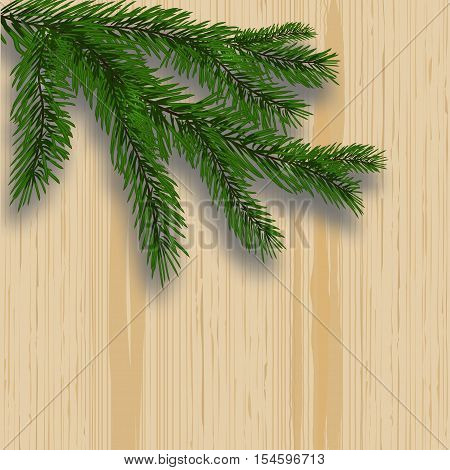 Green lush branch realistic fir trees and shade. Background with wooden texture. vector illustration