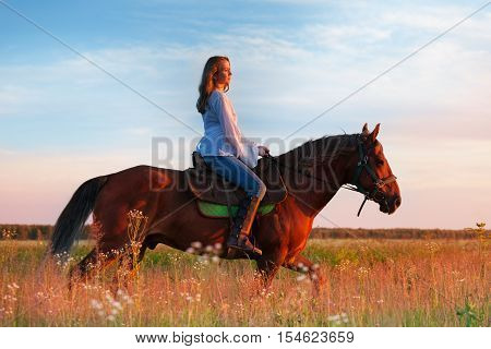 Side view of female equestrian riding beautiful bay horse in a field at sunset
