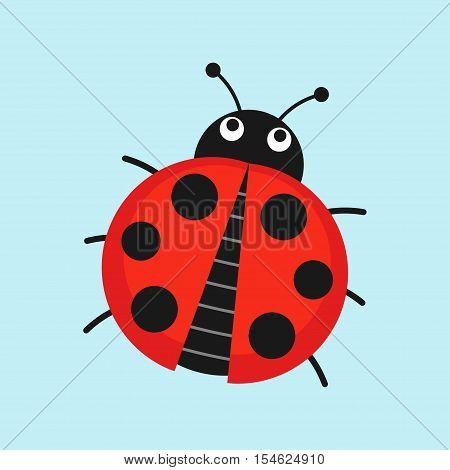 Cute Ladybug vector illustration in flat style. Cartoon beetle isolated from the background.