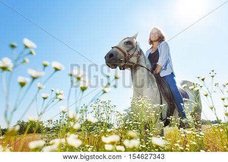 Portrait of young woman horseriding beautiful white horse in flowery meadow at sunny day