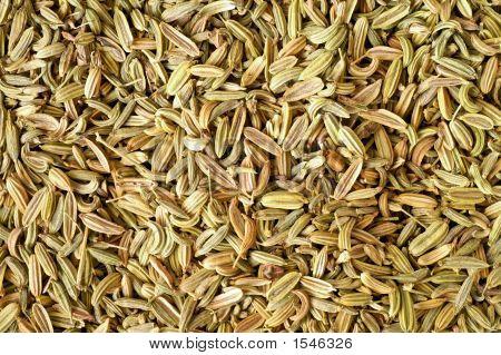 Fennel Seeds Background
