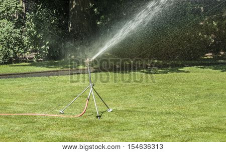 outdoor shot including a lawn sprinkler in sunny ambiance