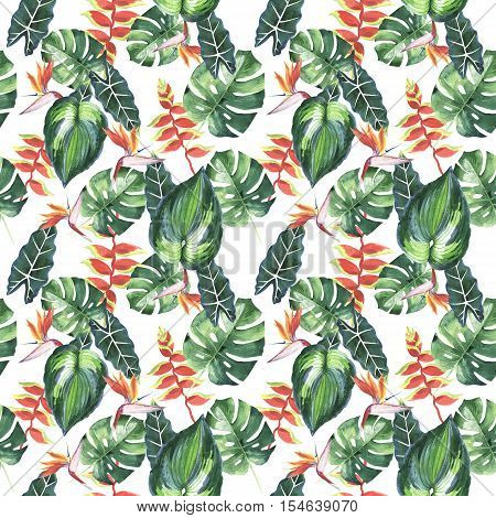 Tropical Hawaii leaves palm tree pattern in a watercolor style isolated. Aquarelle wild flower for background, texture, wrapper pattern, frame or border.