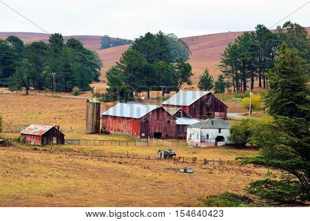 Rustic farm with a dilapidated barn and silo taken in Northern California