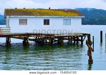 Rustic building on a wooden pier on the water taken in Pt Reyes, CA