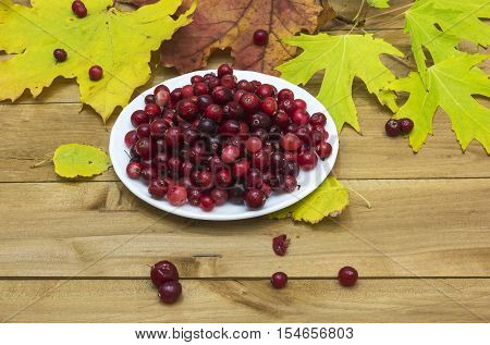 On a wooden surface lie autumn leaves and is white plate with cranberries.