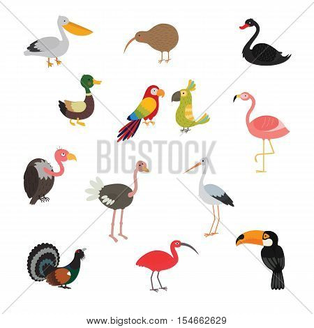 Bird set cartoon colorful vector illustration. Pictures for kids