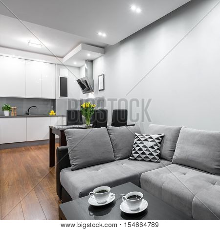 Home With Sofa And Coffee Table