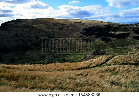 Tall grasses on the hillwalk up Arthur's Seat in Scotland.