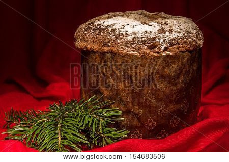Homemade panettone - traditional sweet bread for Christmas and New Year with fruit and spices drizzled with icing sugar on dark red background with pine branch. Horizontal.